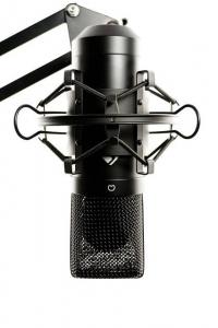Mikrofon in Mikrofonspinne