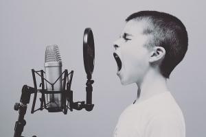 Mikrofon Testberichte